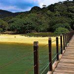 Penang State Park