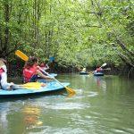 Kayak With Dev Adventure Tours