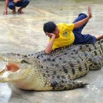 Langkawi Crocodile Park