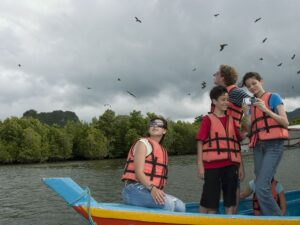 langkawi mangrove tour lets you see eagle feeding around the kilim geoforest park in langkawi