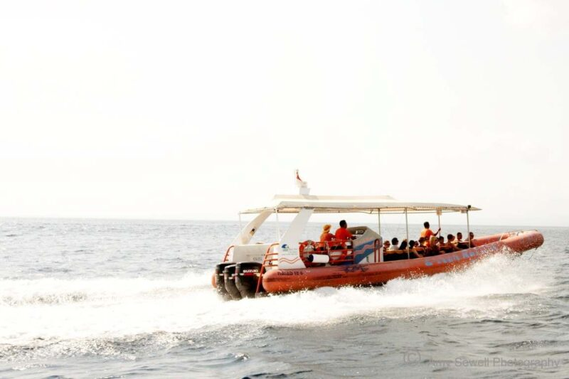 the boat that you'll be on during your island hopping trip bali