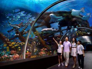 sea aquarium vip ticket