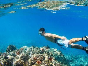the sapi and manukan island hopping tour lets you dive into the waters of the two islands (which by the way is within the tunku abdul rahman park)