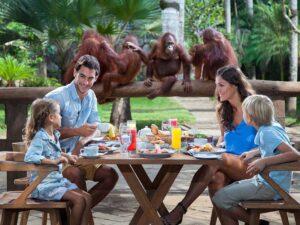 family enjoying breakfast with the bali zoo breakfast with the orang utan package addon
