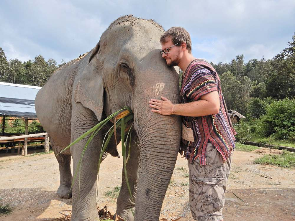 get up close and personal with the chiang mai elephant mountain sanctuary