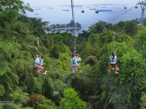 with megazip sentosa ticket you'll enjoy a flying fox adventure in the sentosa island