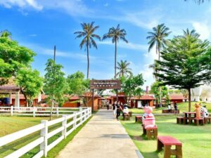 the entrance to the swiss sheep farm pattaya