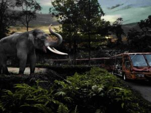 with the singapore night safari ticket you may see animals in the safari when they are most active - from birds and snakes to elephants