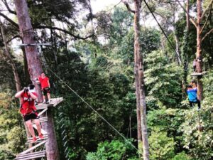 skytrek langkawi ticket lets you enjoy the forest of langkawi from tree top obstacles like this one