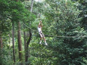a participant in the skytrek langkawi trying flying fox