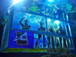 Aquaria KLCC cage rage tickets - get discount tickets to see sharks in cage